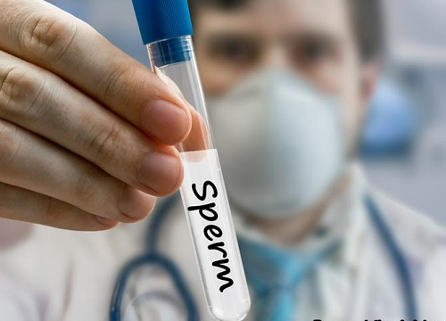 Сперма донора брянск